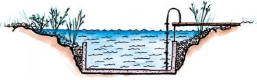 Grafik Schwimmteich